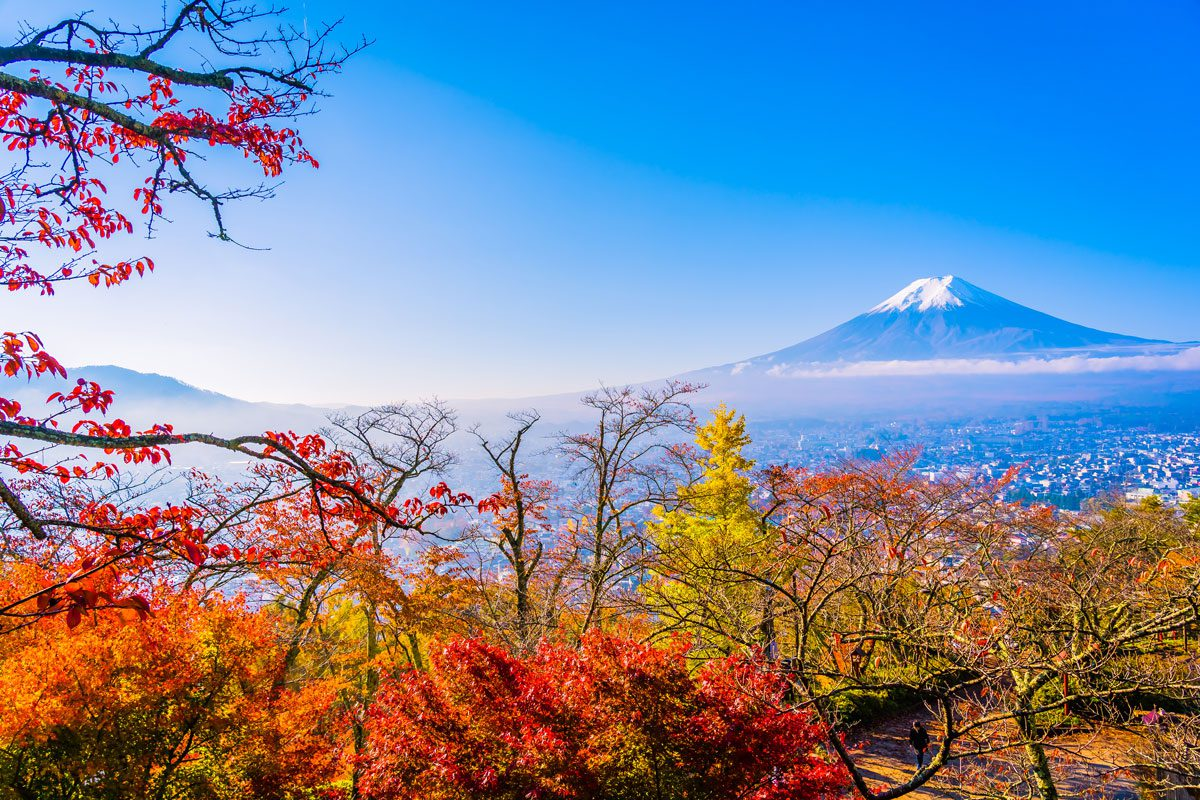 TOKYO HITASHINAKA 4D3N BY XJ