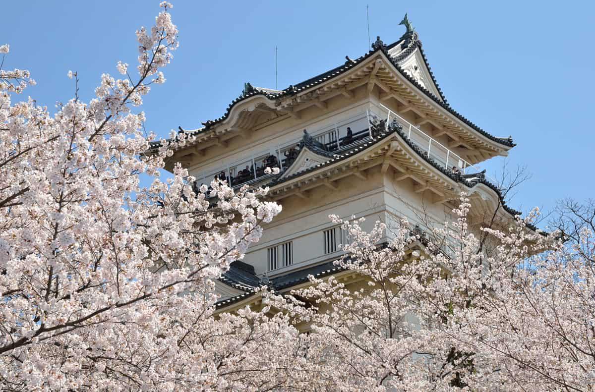 SPRING TOKYO KAMAKURA 5D3N By Air Asia
