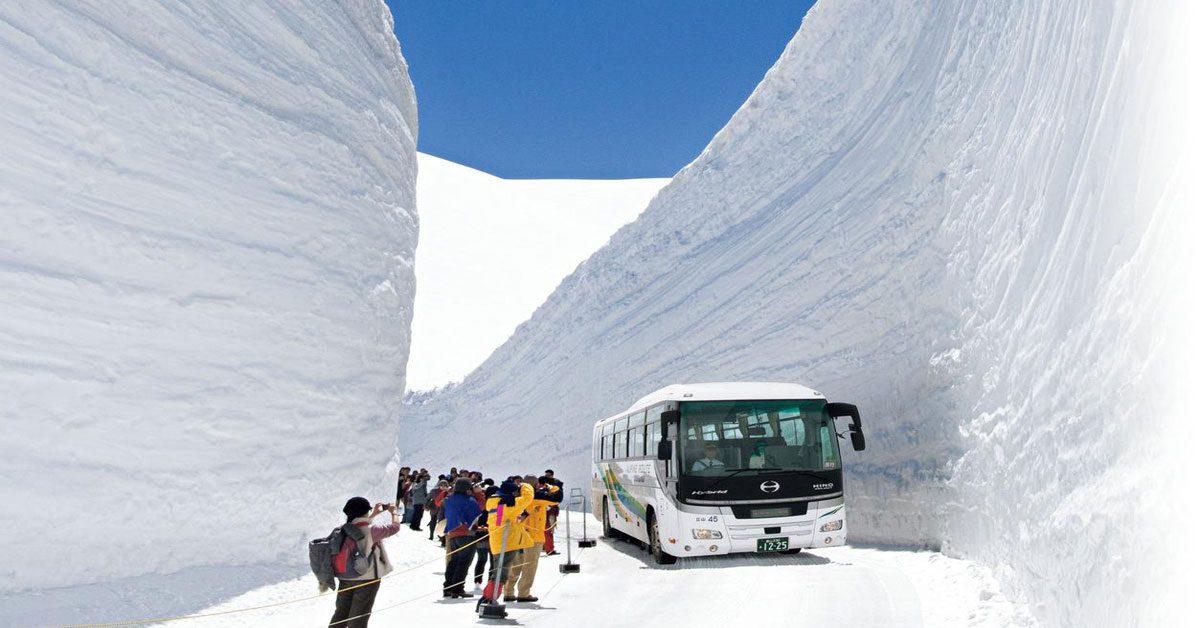 สุดว้าว กับกำแพงหิมะ ยุคิโนะโอทานิ สัมผัสเมืองกลิ่นไอ เมืองมรกดโลกชิราคาวาโกะ  เที่ยวชมงานเทศกาลดอกทิวลิป ประจำปีที่ใหญ่ที่สุดของประเทศญี่ปุ่น NGO EXLUSIVE TULIP FAIR & JAPAN ALPS